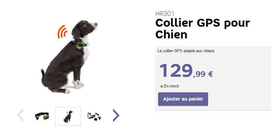 sfr lance le collier gps pour chien connect. Black Bedroom Furniture Sets. Home Design Ideas