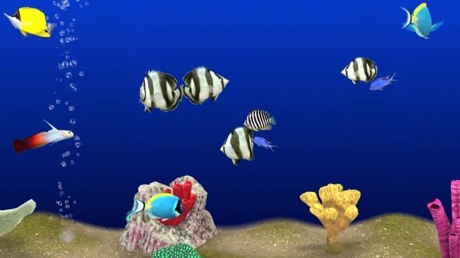 Transformez Votre Tv En Aquarium Virtuel 3d Interactif Avec La