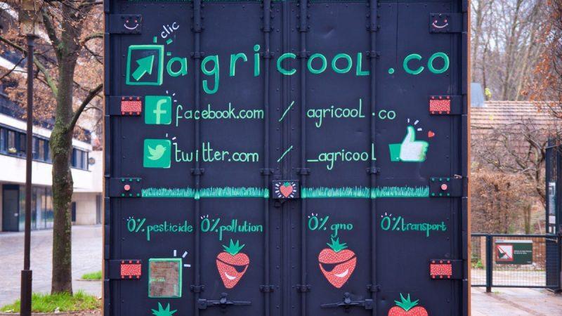 Xavier Niel investit dans la production de fraises en milieu urbain