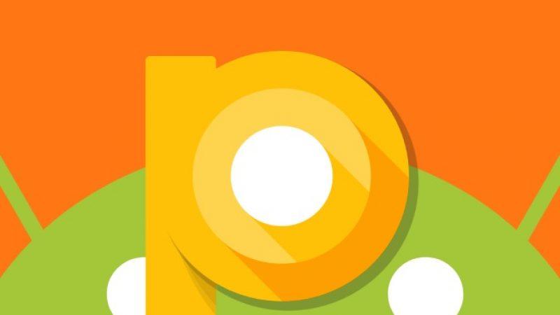 Android P : sa première version bêta pourrait être accessible pour mi-mars