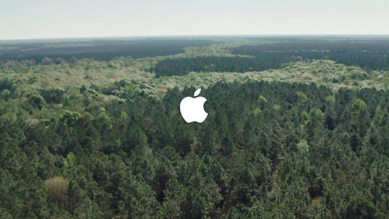Apple a la main verte et se fixe comme objectif de produire des iPhones recyclés à 100%