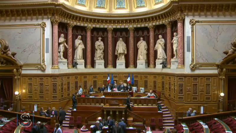 La loi relatif au renseignement a été adoptée au Sénat !