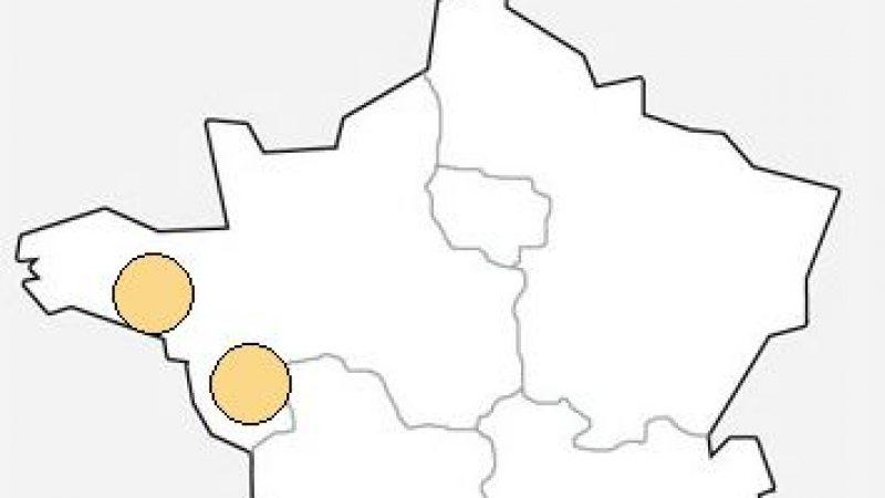Free: Panne sur certains DSLAM en Pays de Loire