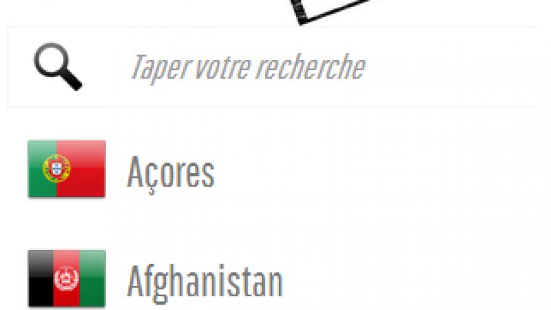 Free Mobile International : un site pour mieux informer les Freenautes sur les tarifs