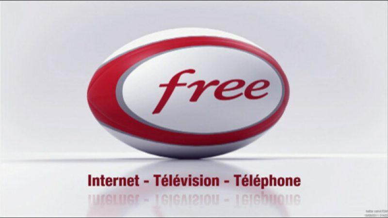 Free sponsorise la Coupe du Monde de Rugby sur TF1