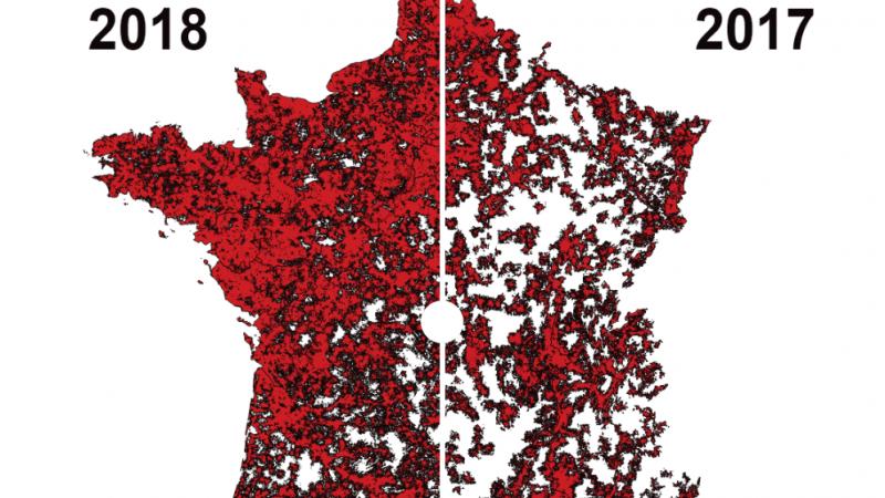 Free, Orange, SFR et Bouygues : découvrez de façon interactive l'évolution de la couverture 4G du territoire pour chaque opérateur