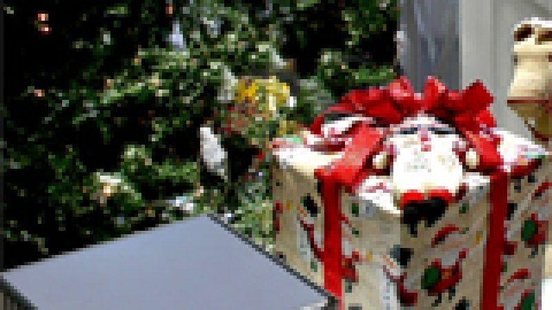 Concours de Noël : Petit papa Niel, je voudrais dans ma Freebox V6…