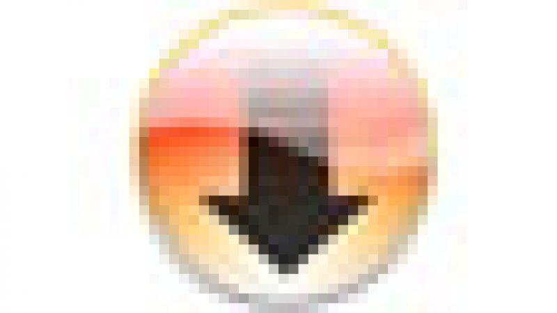 Mission Zelnik: Vers une licence globale sur le streaming