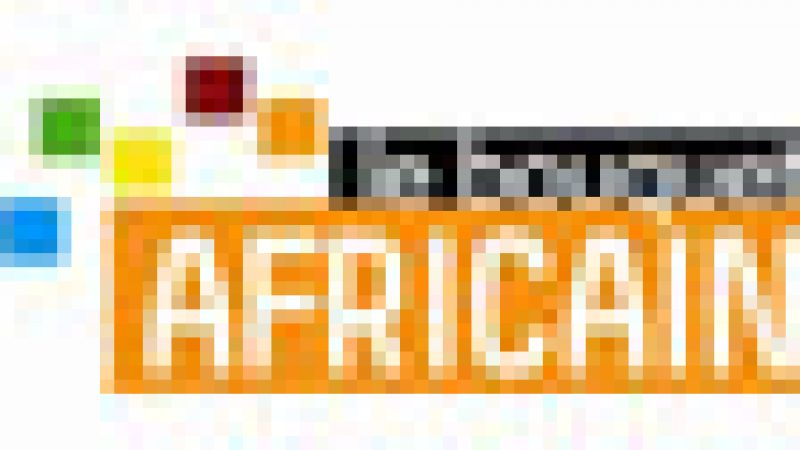 La CAN 2010 non diffusée sur la pack Africain pour cause d'exclusivité avec Orange