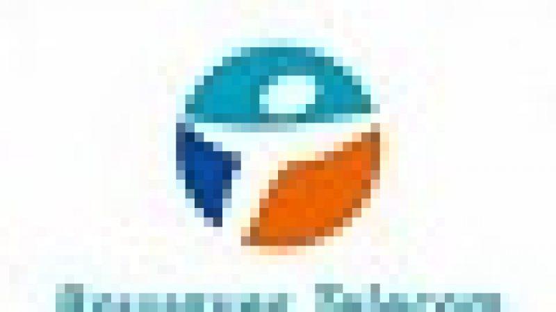 Déploiement de la fibre optique : l'inquiétude de Bouygues Télécom