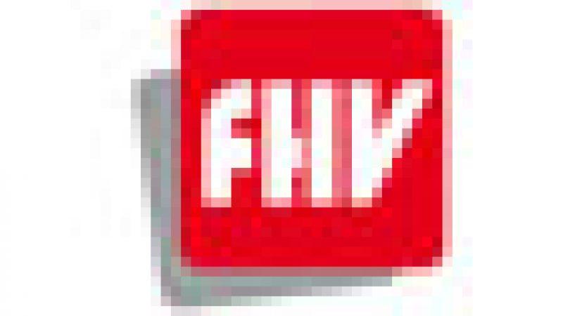 FHV : Partenariat entre Free et Endemol