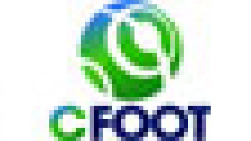 Le canal CFOOT déjà activé sur la Freebox