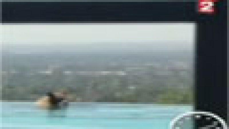 Zapping :  Un ours dans la piscine