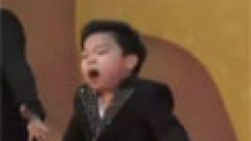 Zapping : Un Psy miniature fait le buzz….