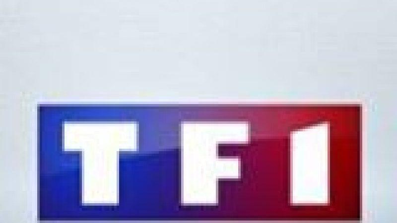 Les Enfoirés signent la meilleure audience de l'année pour TF1