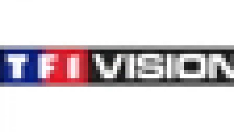 TF1 Vision sur Freebox: Interview du Directeur Général