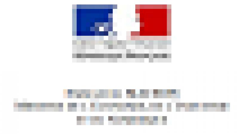 Les patrons d'Orange, Bouygues Télécom, Iliad et SFR-Numéricable reçus par Emmanuel Macron ce vendredi
