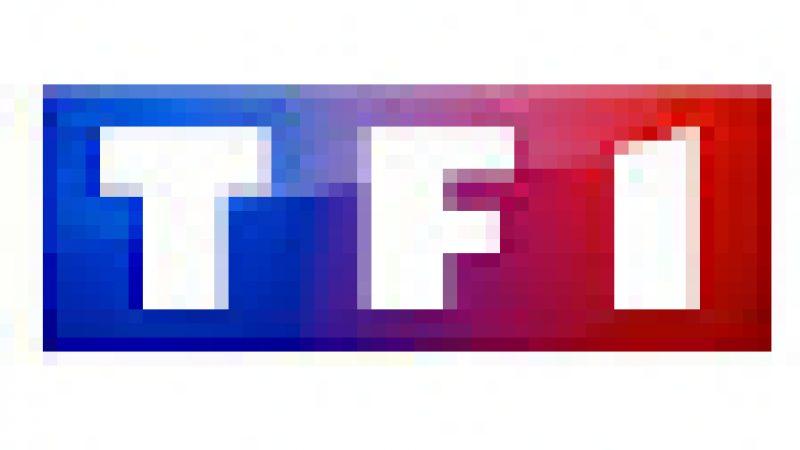 TF1 et le groupe Newen entrent en négociation exclusive. France Télévisions voit rouge.