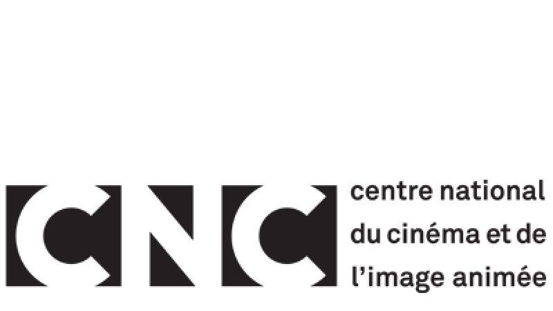 Année record pour la fiction française, audiences excellentes mais créations originales encore trop timides