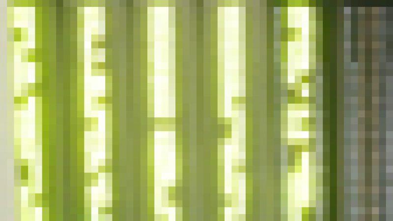Spécial Chat Free : Le dégroupage des DOM, FreeWifi, etc….