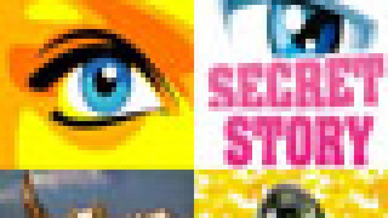 Secret Story: Le CSA rappelle à l'ordre TF1