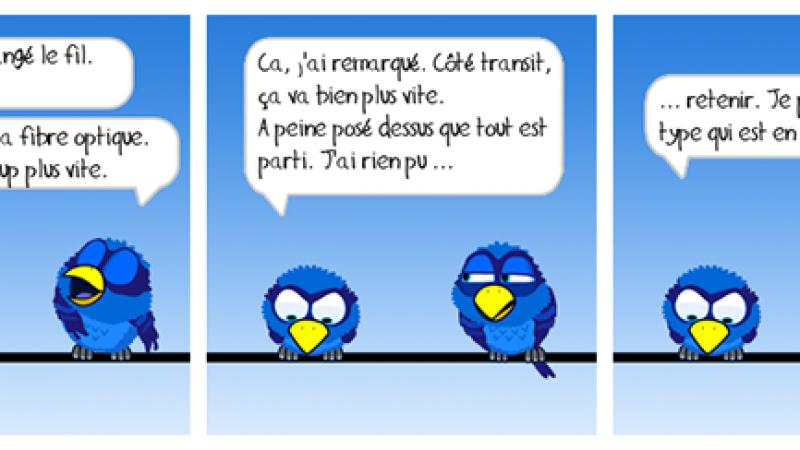 Free, SFR, Orange et Bouygues : Les internautes se lâchent sur Twitter # 26