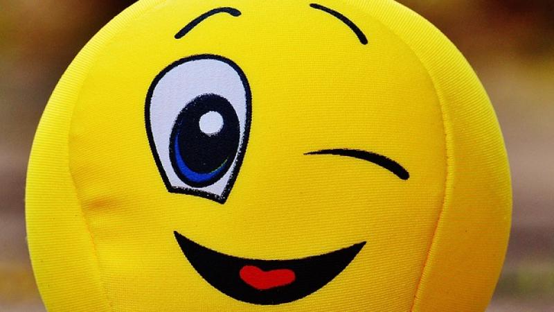 Clin d'oeil : Free mis à mal par les gilets jaunes, la théorie tirée par les cheveux d'un éditorialiste