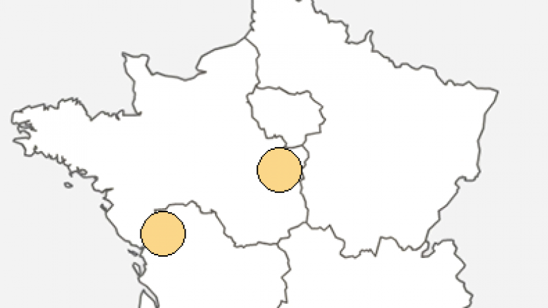 Free : Incident réseau dans le département de la Vendée
