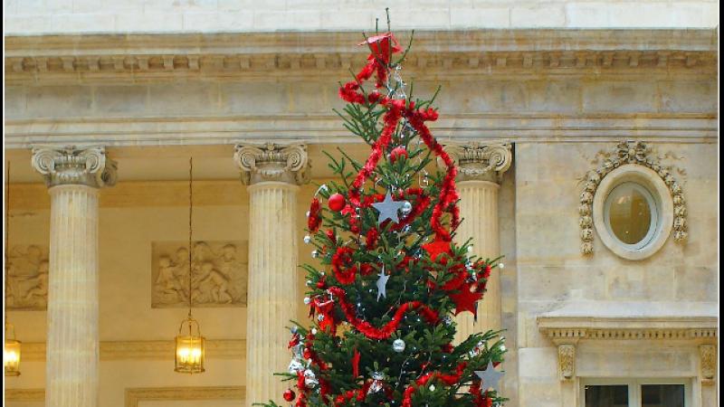 Free : « Noël avec une multitude de cadeaux au pied du sapin ! »