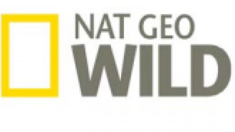 National Geographic Channel arrive dans le bouquet Famille d'Orange