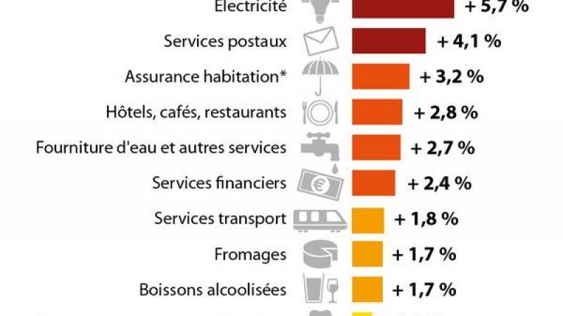 Infographie : la téléphonie, le secteur dont les prix ont les plus baissé en 2014 selon l'INSEE