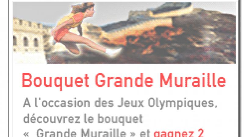 Free : Grand jeu médaille d'or des JO Beijing