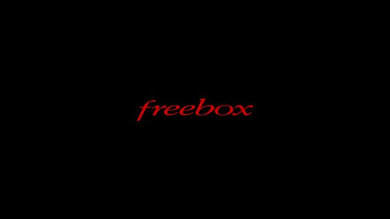 "Freebox rejoint Apple et Google dans la ""Fair Standarts Alliance"""