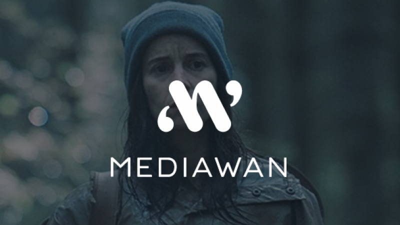 Mediawan (Xavier Niel) boucle l'acquisition du 1er producteur audiovisuel italien et met le cap sur l'international