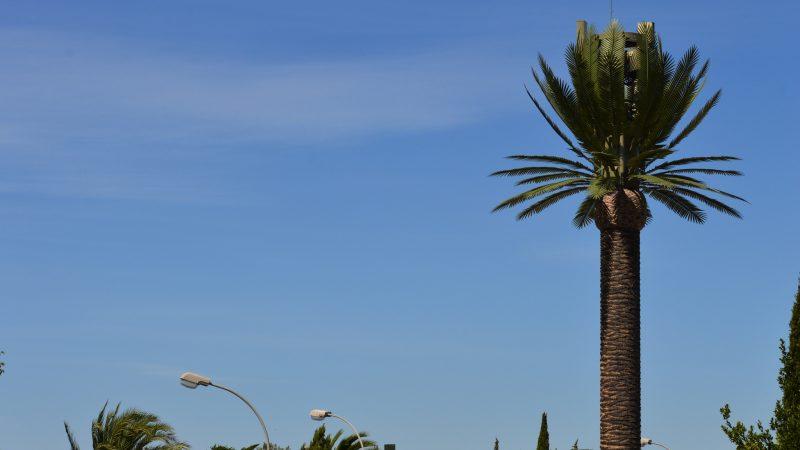 Free Mobile : Reportage-photos antenne de type palmier royal