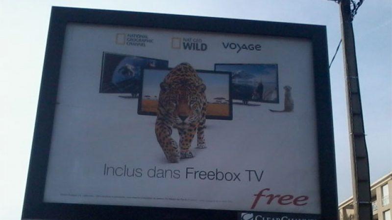 Free lance une campagne d'affichage pour annoncer l'ajout des chaînes découvertes premium sur Freebox TV