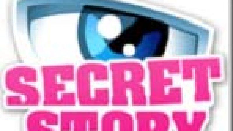 La chaîne Secret Story arrive le 8 juillet sur Freebox TV
