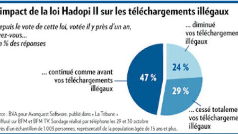 Sondage : L'Hadopi ferait baisser le piratage