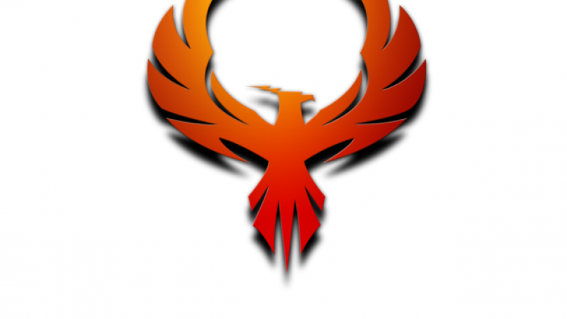 The Pirate Bay fait son retour et n'est toujours pas bloqué  par Free