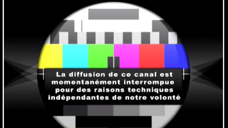 La chaîne TV Biznes n'est plus disponible sur Freebox TV