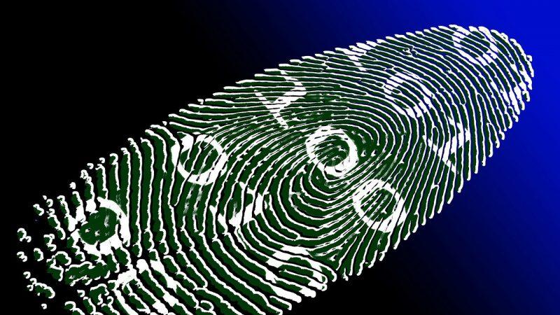 Des empreintes digitales créées informatiquement pourraient passer la sécurité de votre smartphone