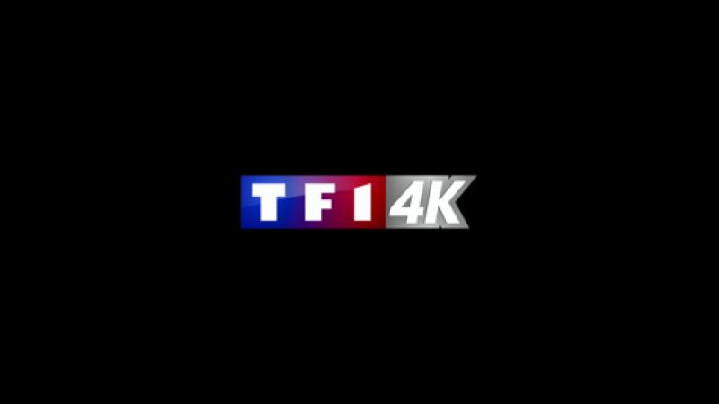 TF1 4K débarque de nouveau sur la Freebox