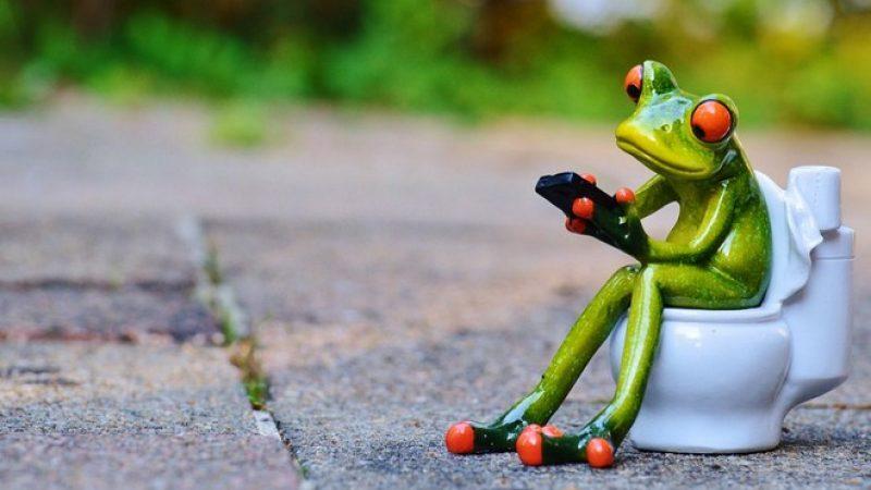 Utiliser le smartphone sur le trône : une mauvaise idée pour votre santé