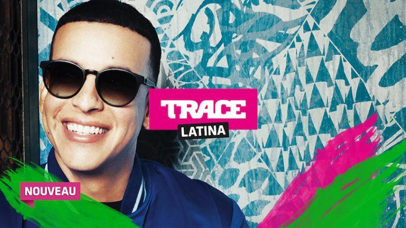 Free annonce que Trace Latina est disponible sur Freebox TV pour les abonnés TV by Canal