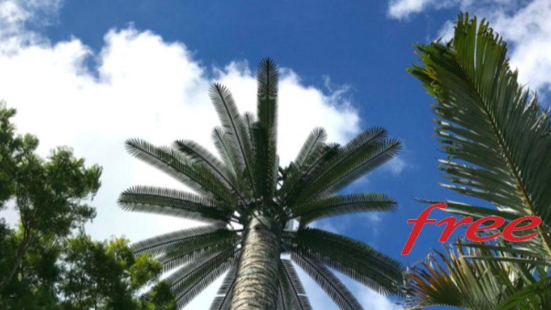 Antenne, débit et couverture 4G Free Mobile Réunion : Focus sur le chef-lieu