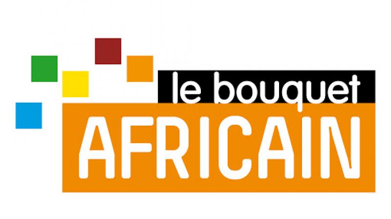 Freebox TV : Le bouquet africain s'enrichit d'une nouvelle chaîne francophone