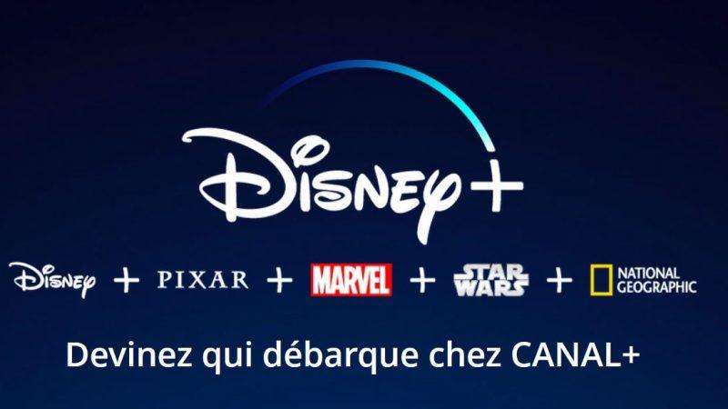 Canal+ lance une nouvelle vente flash sur les Freebox avec Disney+ inclus