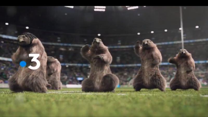 Les emblématique marmottes de France 3 reviennent en mode sports tout l'été