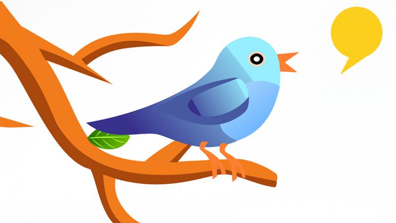 Free tease sa Freebox Pop, Twitter se déchaîne : théories, craquages, euphorie…