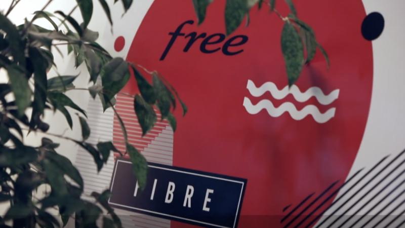 Free se lancera sur le marché des entreprises avec une nouvelle Freebox